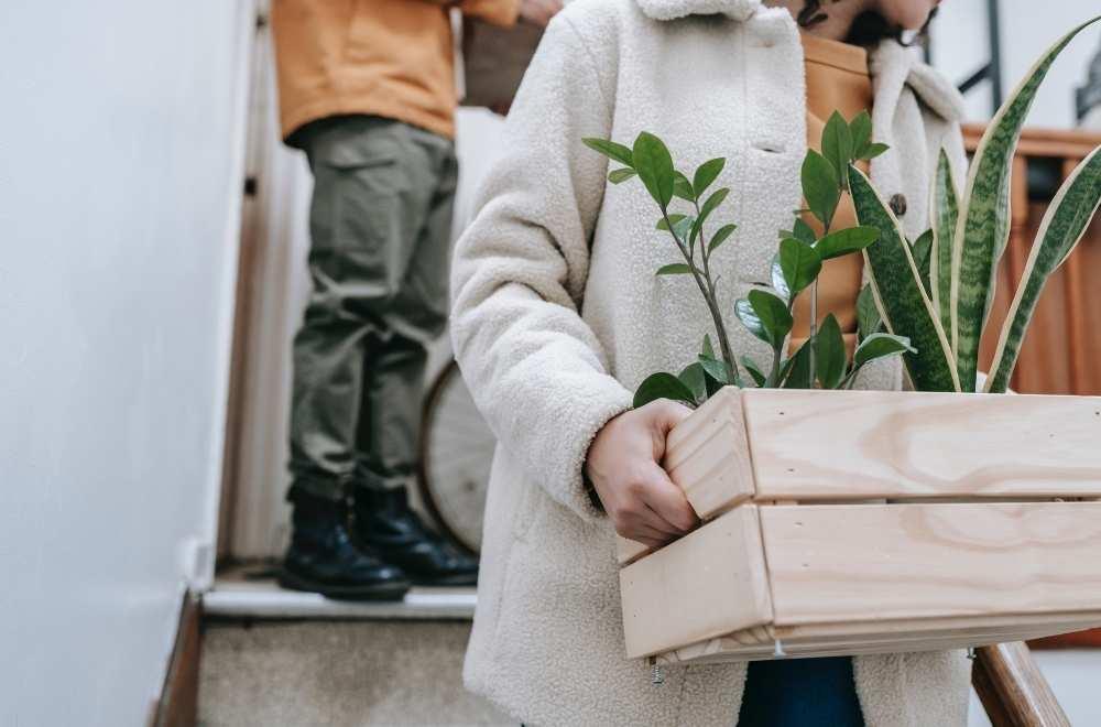 femme en train de déménager une plante pendant son congé déménagement