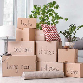Faire un déménagement écologique, c'est possible !