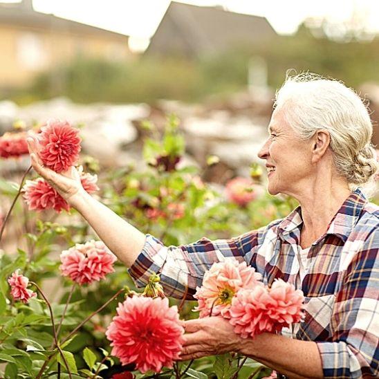 Où déménagent les retraités : leurs destinations préférées